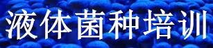 菇行天下液體菌種培訓